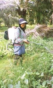 Buruh-Perempuan-2